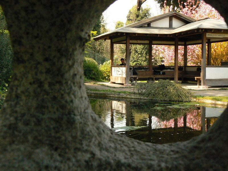 Ботанический сад Ватикана