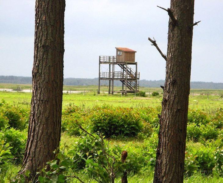 Природный парк на берегах озера Энгуре