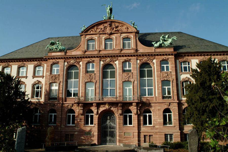 Музей естествознания Зенкенберг