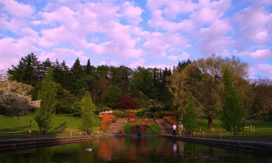 Ботанический сад, Гётеборг