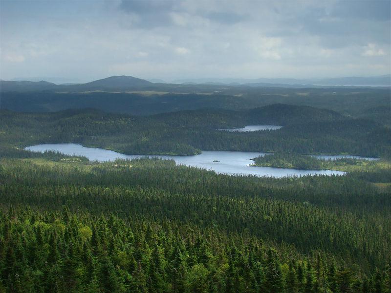 Национальный парк Терра-Нова