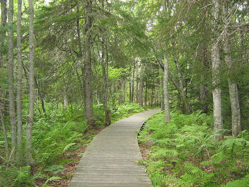 Национальный парк Кушибугуак