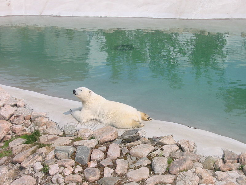Зоопарк Рануа