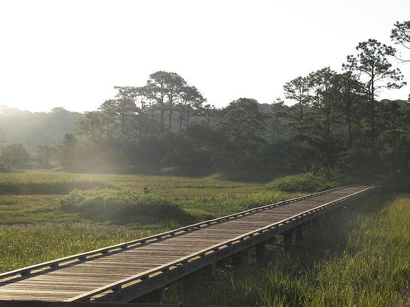 Прибрежные острова Южной Каролины