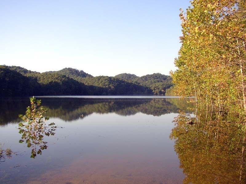 Национальный лесной заказник Дэниэла Буна