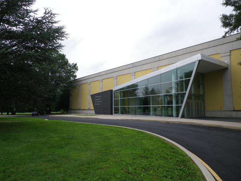 Делавэрский художественный музей