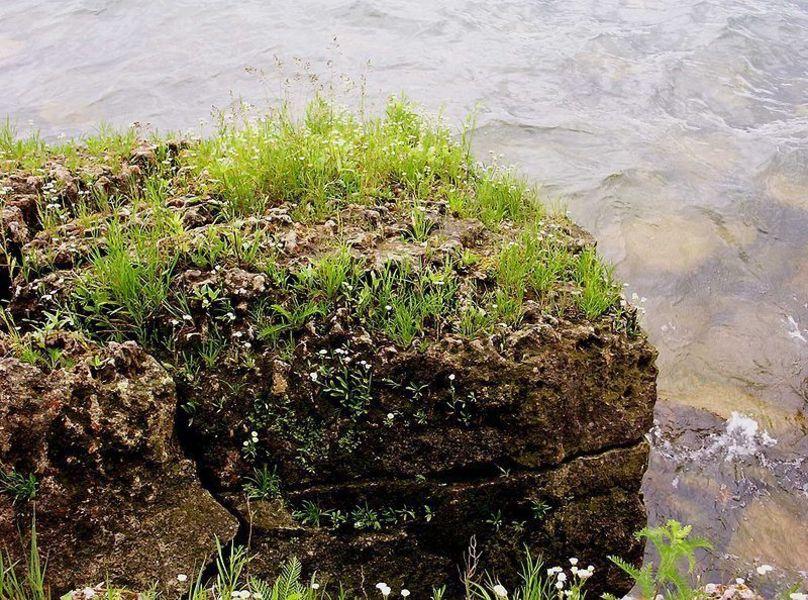 Острова озера Эри