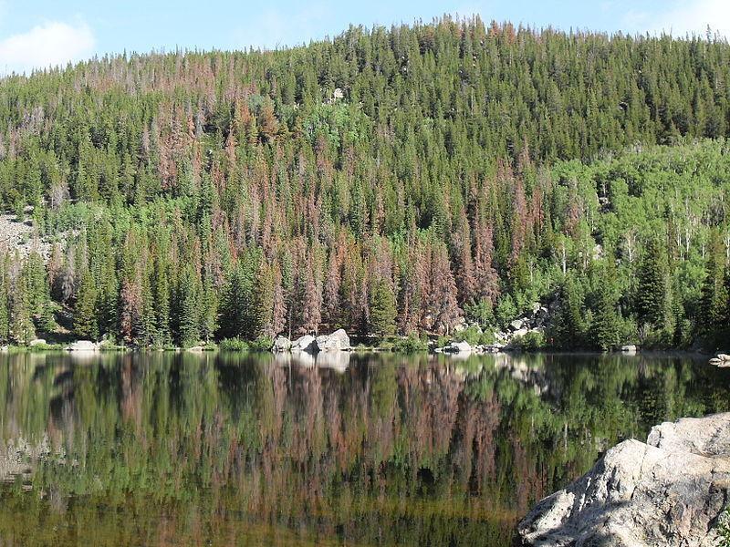 Национальный парк Скалистые горы