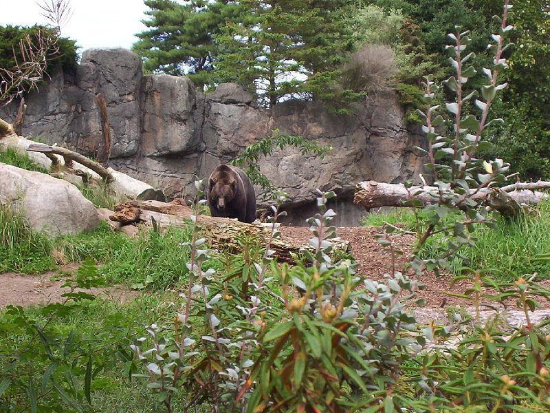 Зоопарк Вудленд-парка