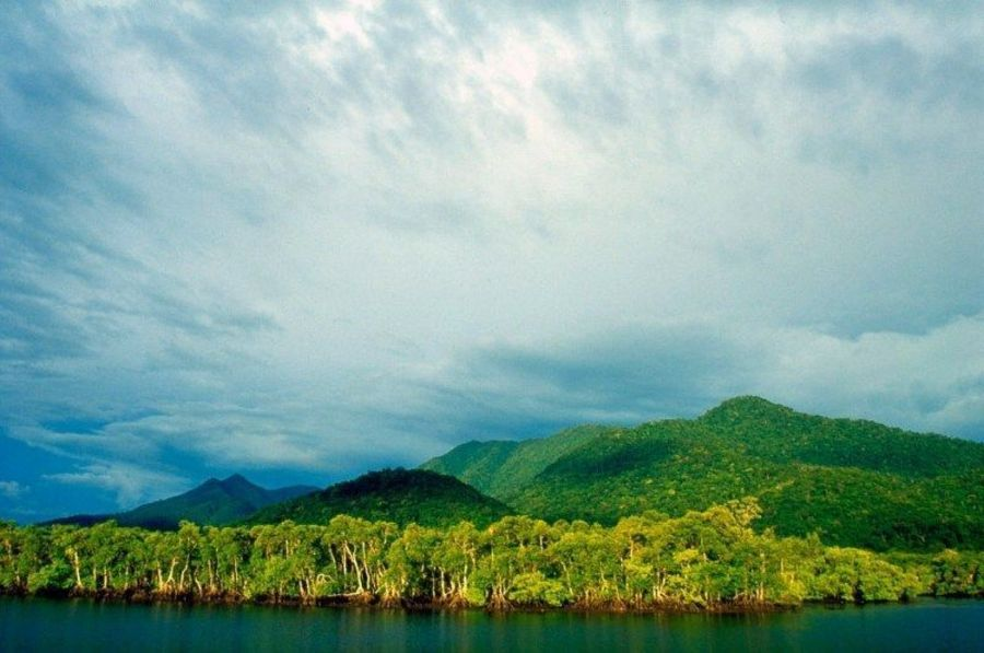 Остров Кардозу