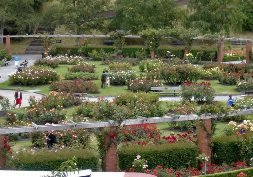 Ботанический сад, Веллингтон