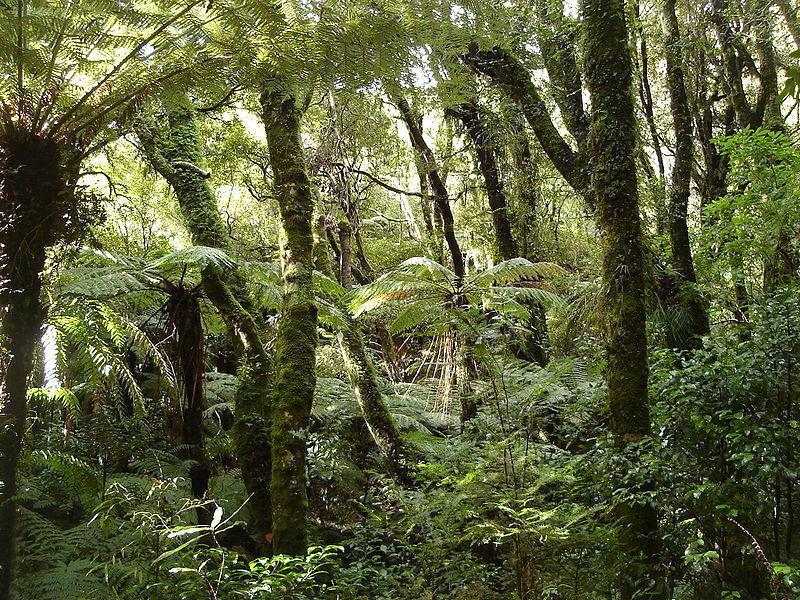 Национальный центр дикой природы Маунт-Брюс