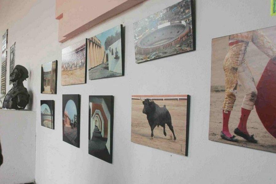 Музей быка