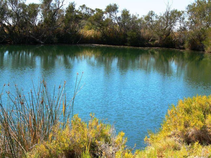 Национальный парк Витжира