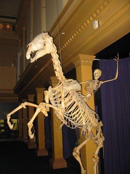 Музей Австралии