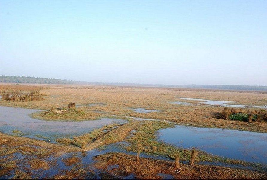 Национальный парк Дудхва