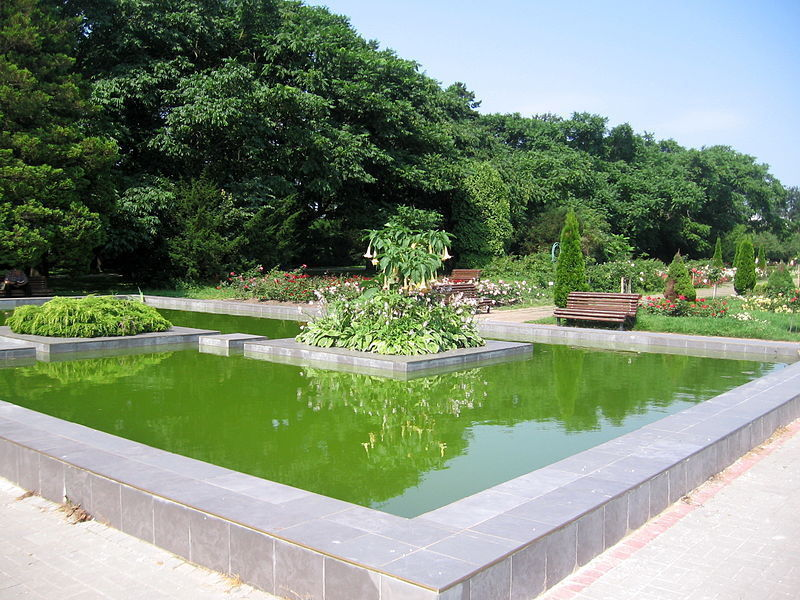 Центральный ботанический сад, Минск