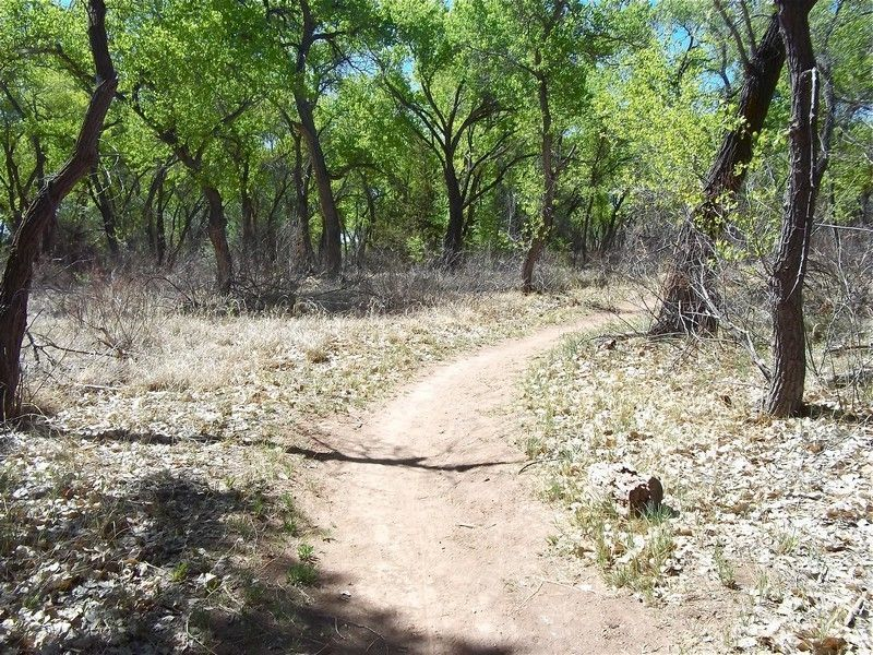 Парк Пасео-дель-Боске