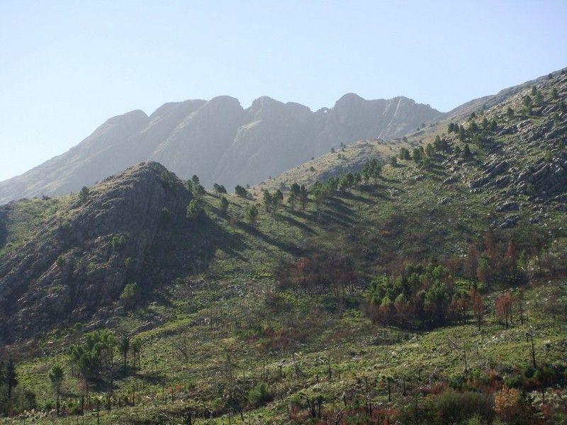 Провинциальный парк Эрнесто Торнквиста