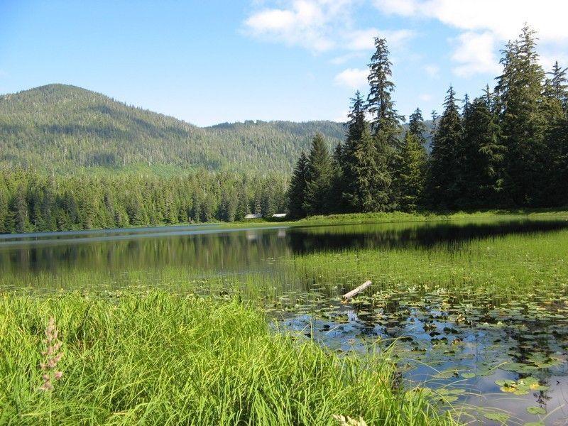 Озеро Уордс