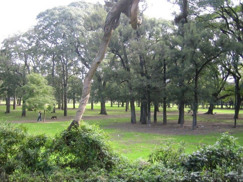 Парк третьего февраля