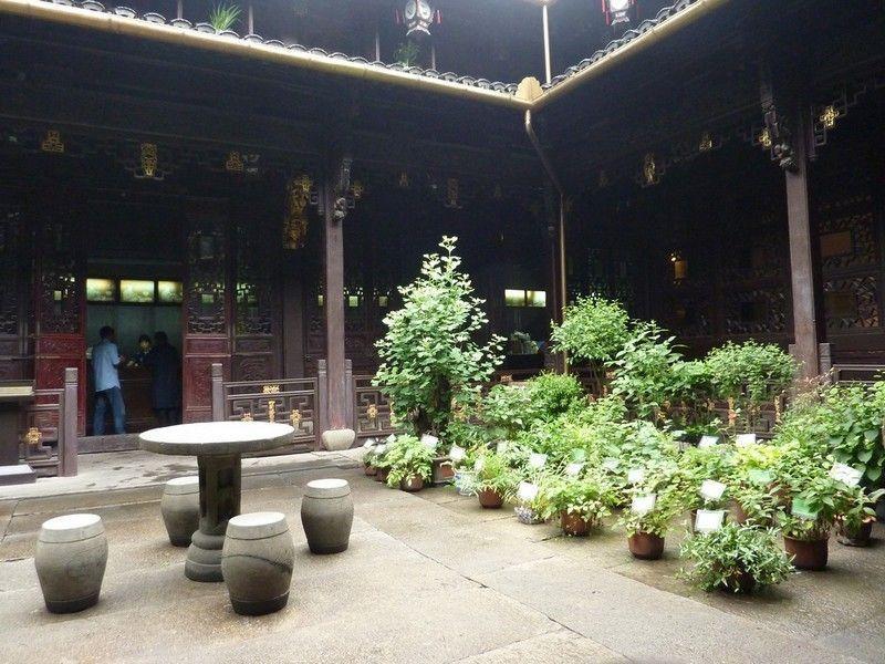 Музей китайской медицины, Ханчжоу
