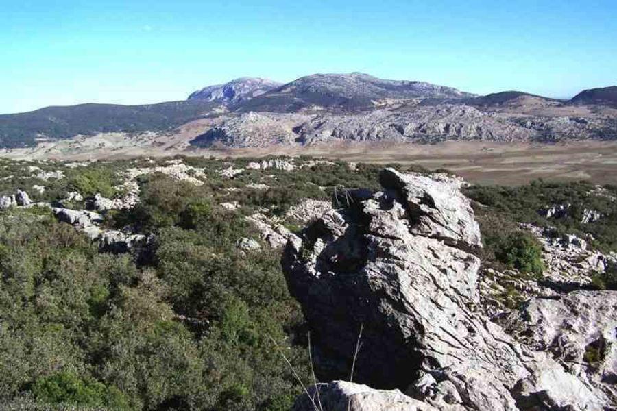 Национальный парк Джебель Таззека