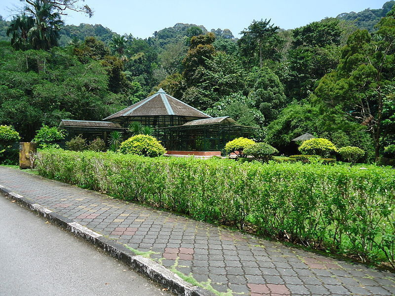 Пенангский ботанический сад