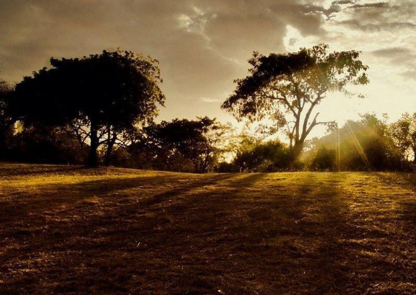Парк Мирадор-дель-Сур