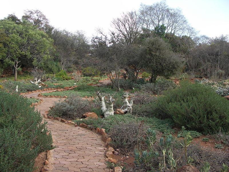 Зоологические сады