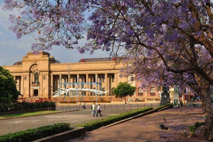 Музей Трансвааля