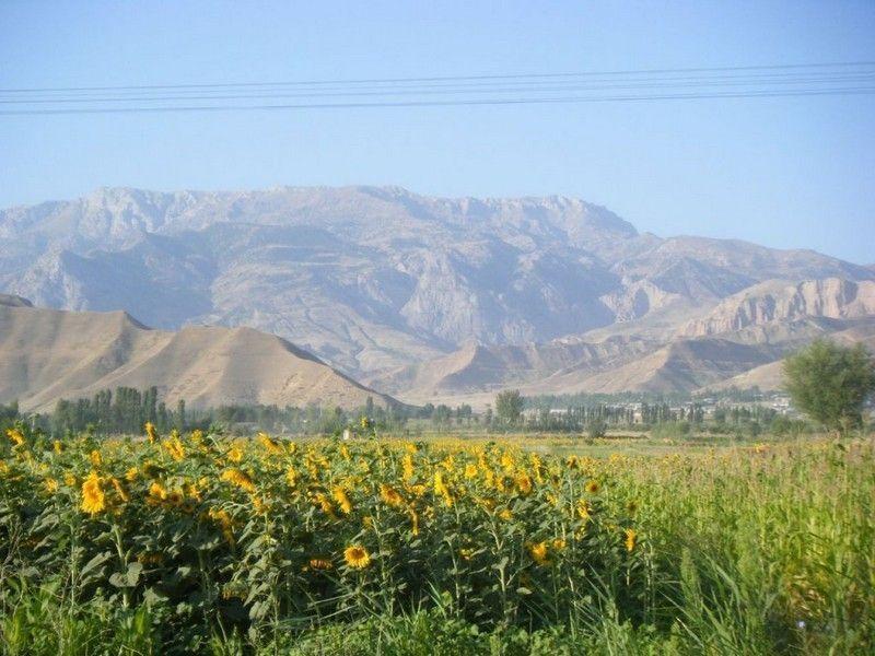 Центральный ботанический сад Академии наук Таджикистана