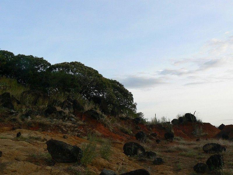 Национальный Парк Саригуа