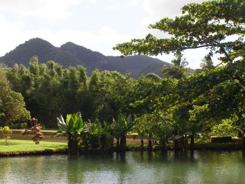 Природный парк «Ле-Валь»