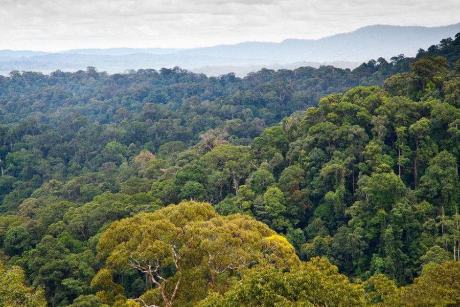 Национальный парк Улу-Тебуронг