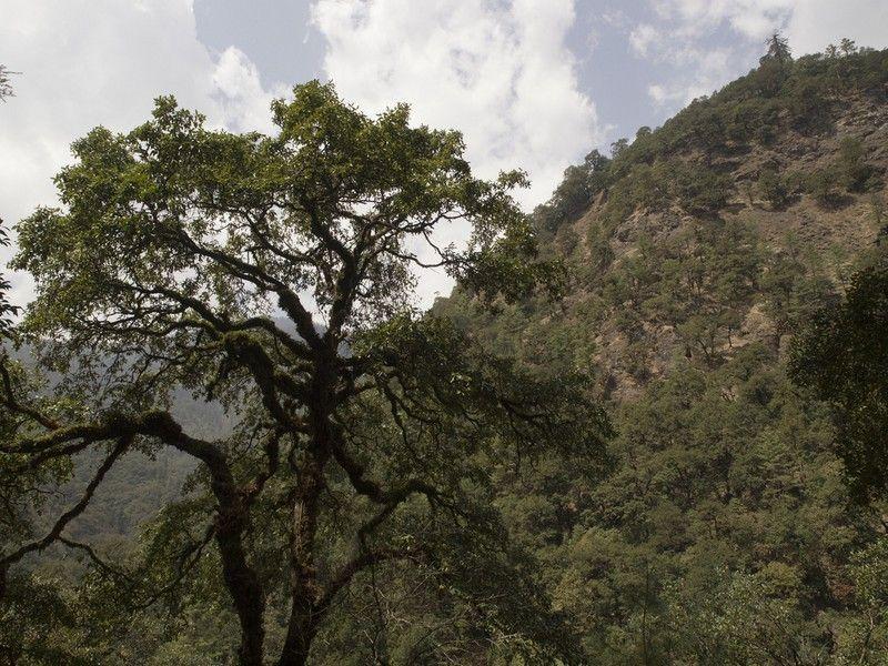 Национальный парк Джигме-Дорджи