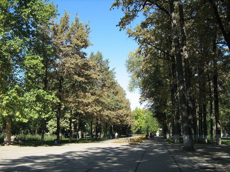 Дубовый парк Бишкека
