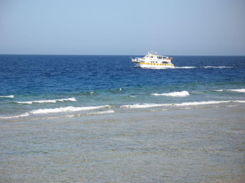 Первый раз в Египет. Новый 2010 год