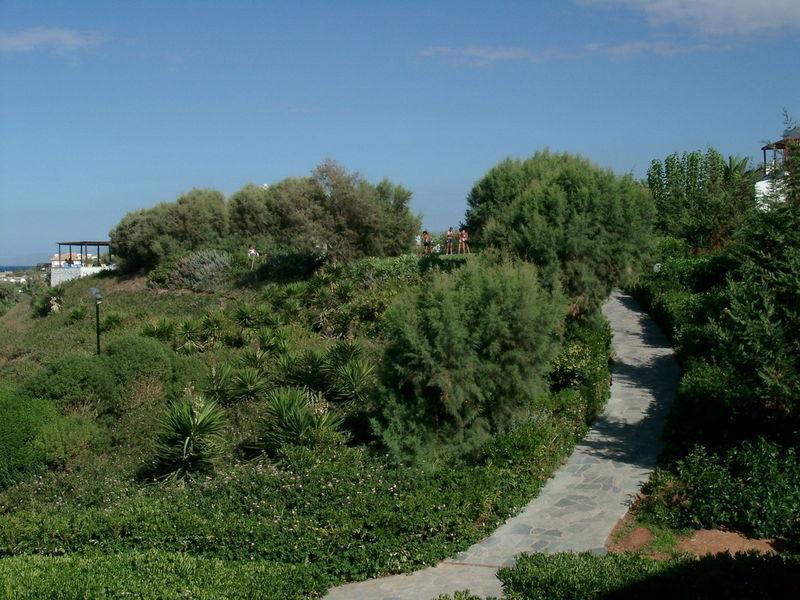 Неформатный Крит