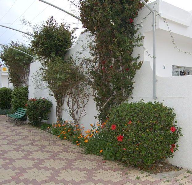 Первый день в Тунисе