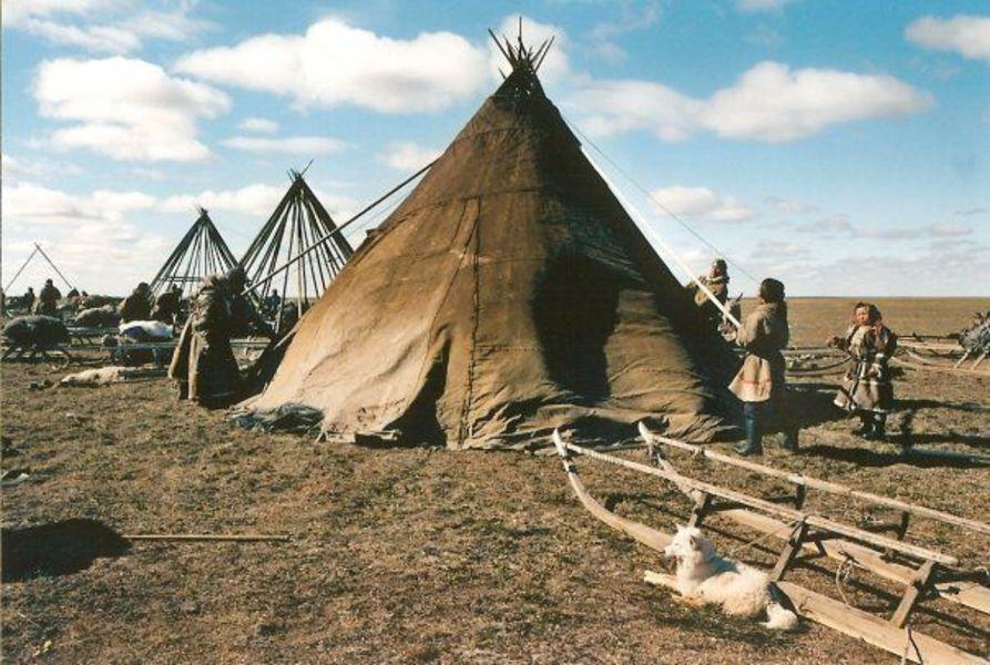Ненцы – малая народность  Заполярья (мое путешествие на Север)