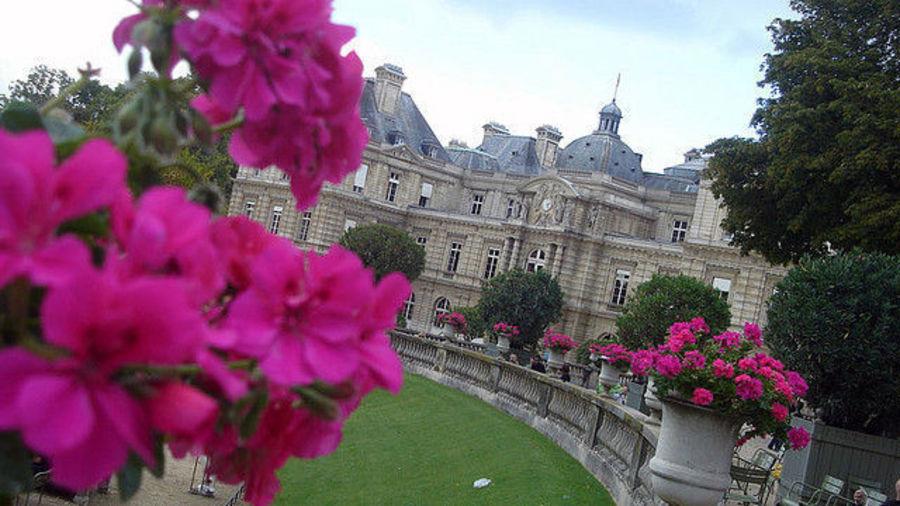Внезапная любовь к Парижу
