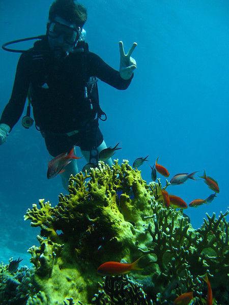 Невероятный остров Маргарита