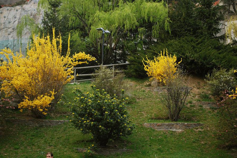 Ордино - Андоррский сад