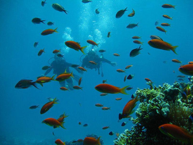 Сказочный остров Флорес