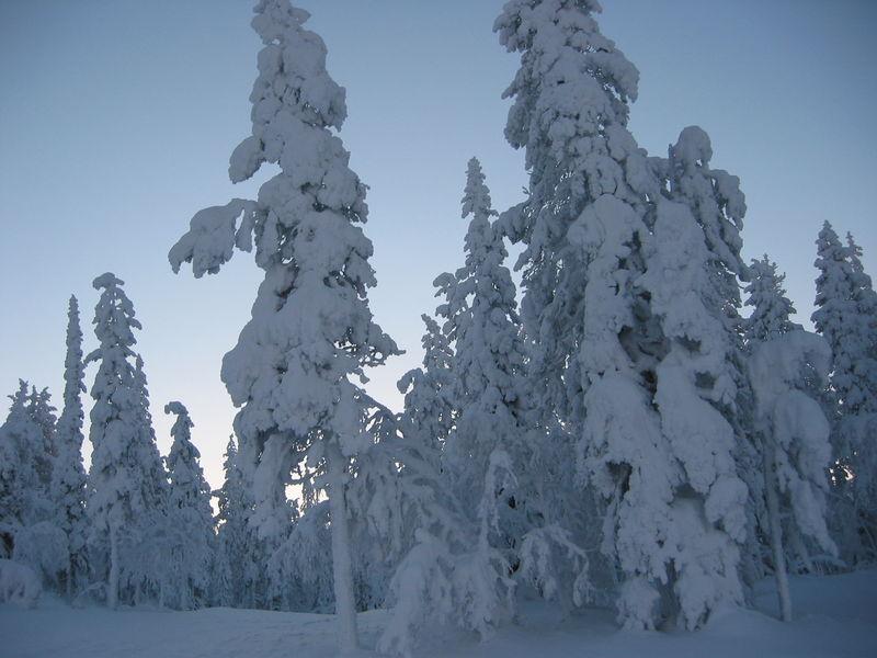 Зимняя Финляндия