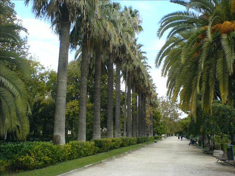 Страна мечты part 2 (Валенсия)