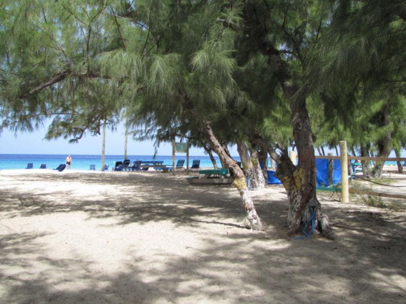 Дайвинг на острове Гранд -Терк
