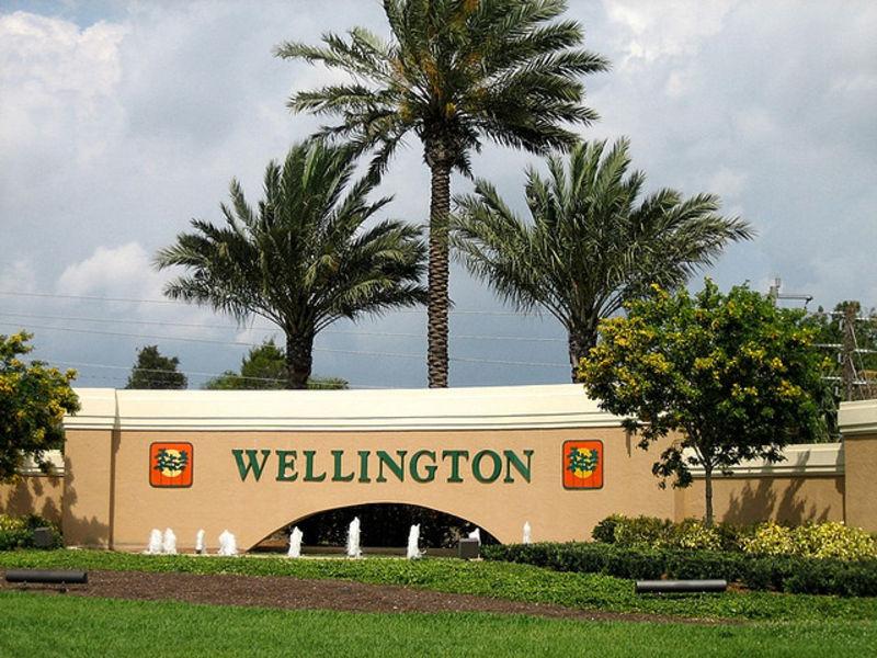 Восхитительный Веллингтон