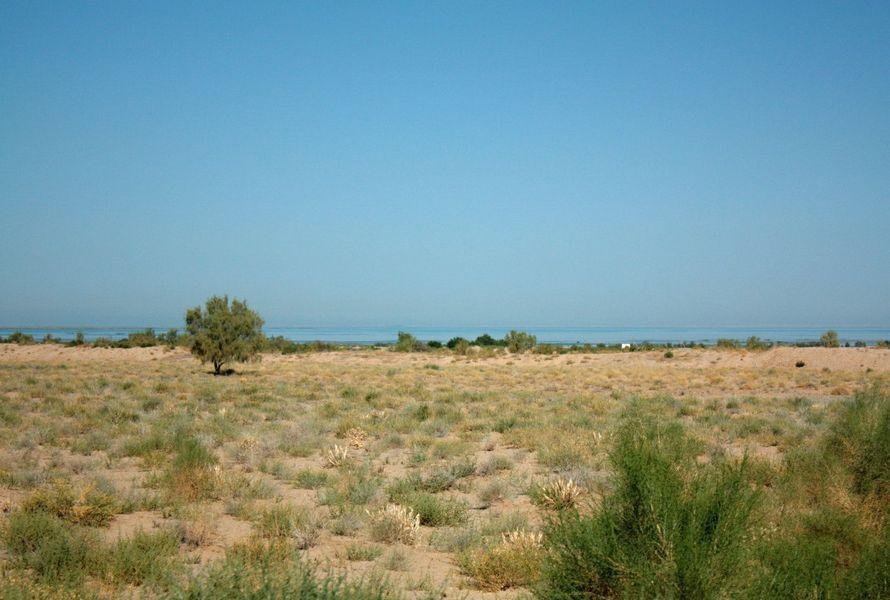 Узбекистан: поездка на озеро Тудакуль